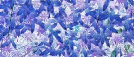 Blue-moss-fabric-design