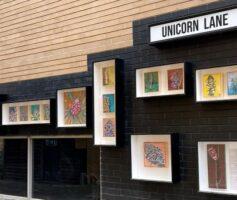 Photo or Unicorn Lane display boxes with artworks of Tegan Crosbie.
